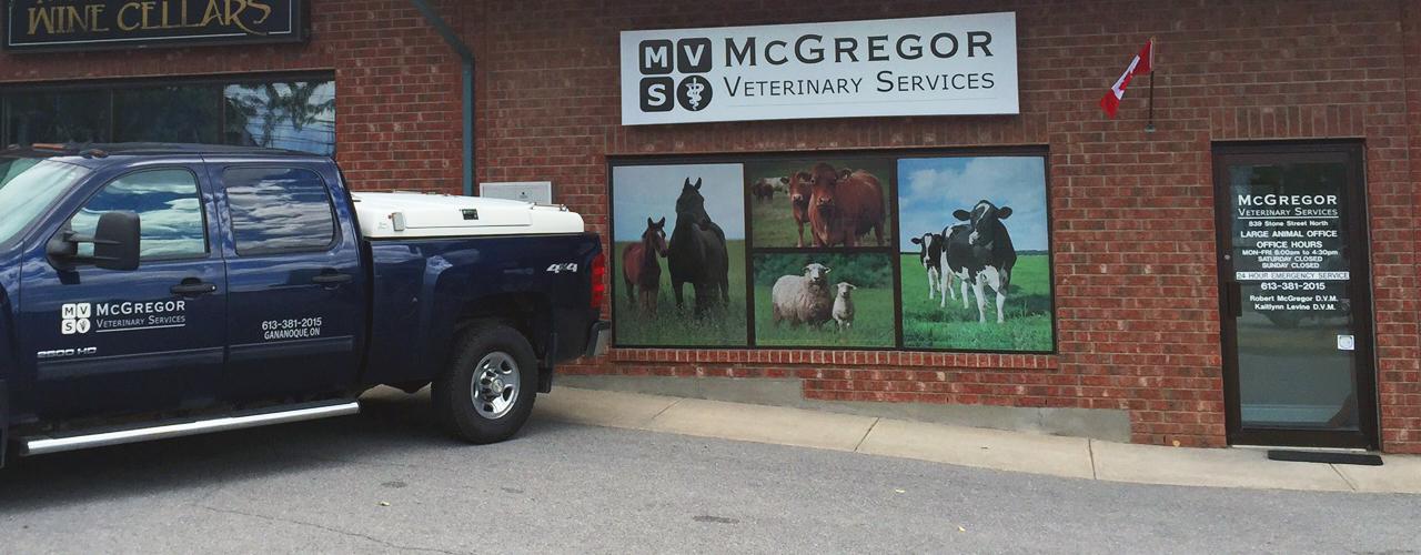 Large animal veterinary clinic in Gananoque, Ontario